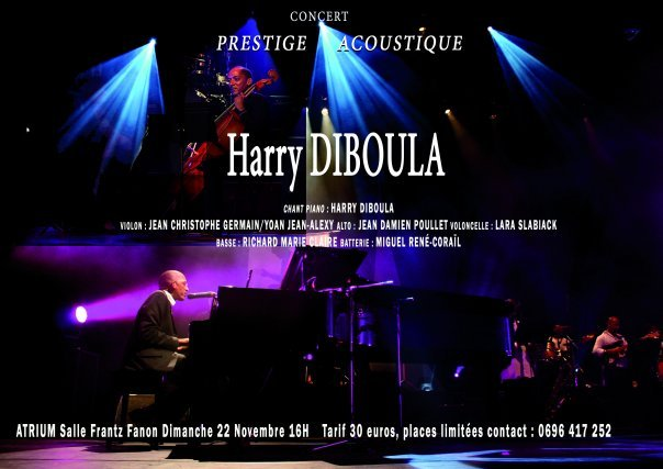 Harry Diboula Prestige Acoustique