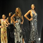 Miss Martinique 2011 : les plus belles photos
