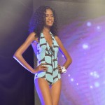 Election--Miss-Martinique-2015--Grand-Carbet--PBK-066