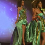 Election--Miss-Martinique-2015--Grand-Carbet--PBK-119