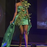 Election--Miss-Martinique-2015--Grand-Carbet--PBK-132