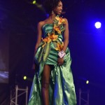 Election--Miss-Martinique-2015--Grand-Carbet--PBK-147
