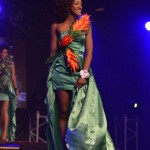 Election--Miss-Martinique-2015--Grand-Carbet--PBK-157