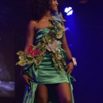 Election--Miss-Martinique-2015--Grand-Carbet--PBK-162