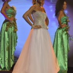 Election--Miss-Martinique-2015--Grand-Carbet--PBK-271