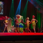 Miss-Prestige-Nationale-Martinique-2015-PBK004