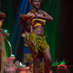 Miss-Prestige-Nationale-Martinique-2015-PBK012