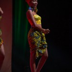 Miss-Prestige-Nationale-Martinique-2015-PBK016