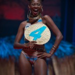 Miss-Prestige-Nationale-Martinique-2015-PBK038