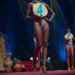Miss-Prestige-Nationale-Martinique-2015-PBK052