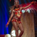 Miss-Prestige-Nationale-Martinique-2015-PBK067