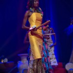 Miss-Prestige-Nationale-Martinique-2015-PBK100