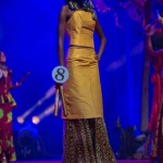 Miss-Prestige-Nationale-Martinique-2015-PBK113