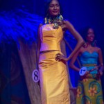 Miss-Prestige-Nationale-Martinique-2015-PBK114