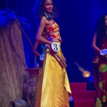 Miss-Prestige-Nationale-Martinique-2015-PBK118