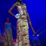 Miss-Prestige-Nationale-Martinique-2015-PBK127