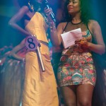 Miss-Prestige-Nationale-Martinique-2015-PBK133