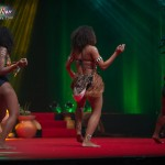 Miss-Prestige-Nationale-Martinique-2015-PBK142