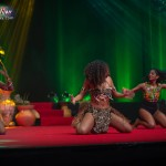 Miss-Prestige-Nationale-Martinique-2015-PBK144