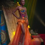Miss-Prestige-Nationale-Martinique-2015-PBK160