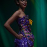 Miss-Prestige-Nationale-Martinique-2015-PBK166