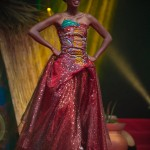 Miss-Prestige-Nationale-Martinique-2015-PBK168