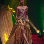 Miss-Prestige-Nationale-Martinique-2015-PBK173