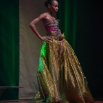 Miss-Prestige-Nationale-Martinique-2015-PBK175