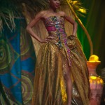 Miss-Prestige-Nationale-Martinique-2015-PBK176