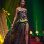 Miss-Prestige-Nationale-Martinique-2015-PBK178