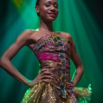 Miss-Prestige-Nationale-Martinique-2015-PBK187