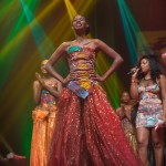 Miss-Prestige-Nationale-Martinique-2015-PBK210