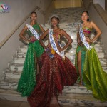 Miss-Prestige-Nationale-Martinique-2015-PBK230