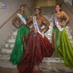 Miss-Prestige-Nationale-Martinique-2015-PBK231