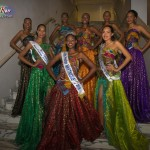 Miss-Prestige-Nationale-Martinique-2015-PBK241